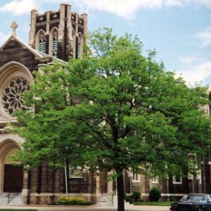 St. Matthew's & St. Joseph's Episcopal Church